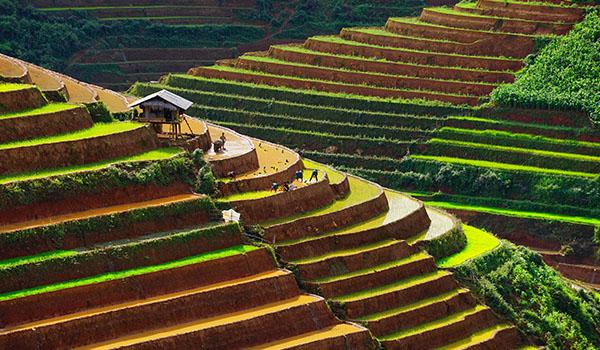 Tourisme solidaire au vietnam 600X350 2