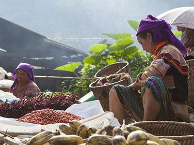 Vietnam : Rencontres avec les Ethnies du Nord