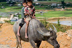 voyage solidaire au vietnam